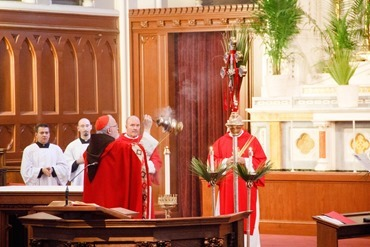 Cardinal Sean P. O'Malley celebrates Palm Sunday Mass March 24, 2013 at the Cathedral of the Holy Cross.<br /><br /><br /><br /> Pilot photo by Christopher S. Pineo